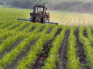 Imu sui terreni agricoli, per pagare c'è tempo fino al 10 febbraio