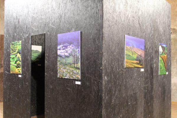 Pangea – Mostra d'arte contemporanea